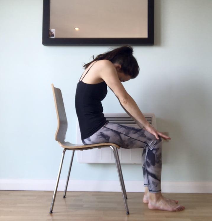 Chair Yoga Cat